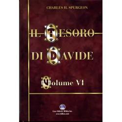 Il Tesoro di Davide Vol. 6
