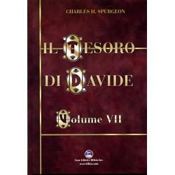 Il Tesoro di Davide Vol. 7
