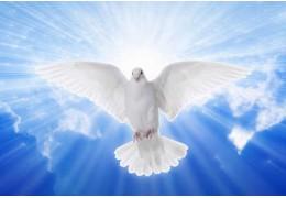 Lo Spirito Santo: alcuni riferimenti storici