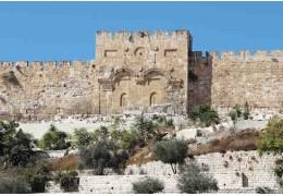 Libri della Bibbia: Neemia
